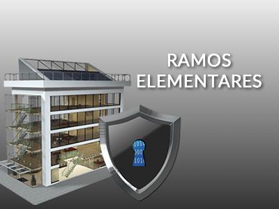 imagem Seguro Ramos Elementares